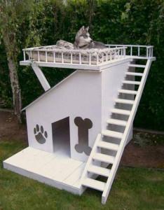 nos-amis-les-animaux-ont-aussi-le-droit-a-leur-meubles26